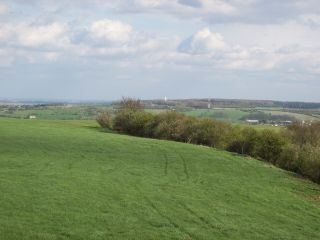 View To Vimy Ridge